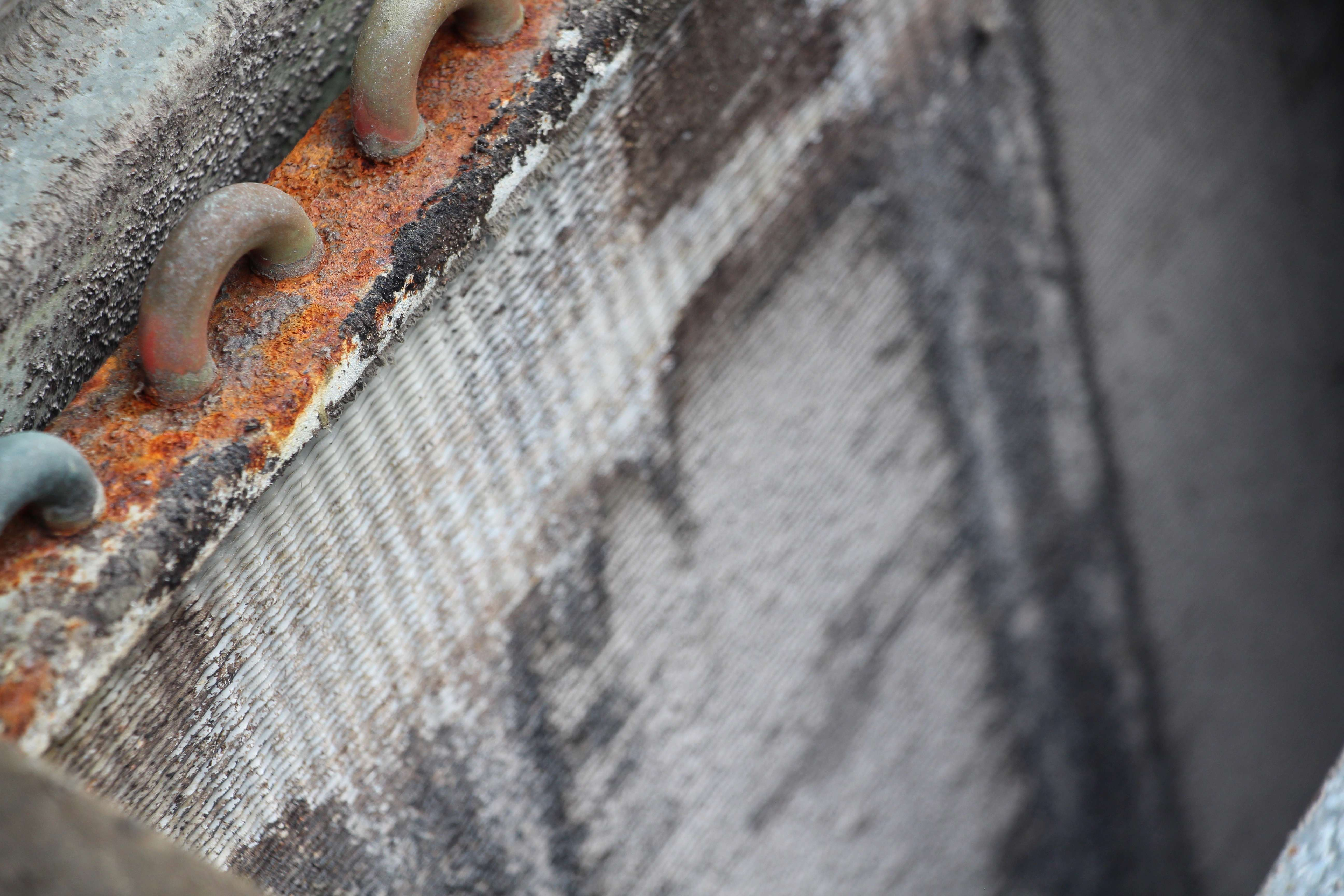 Rust, mold, and dirt on evaporator coil